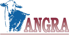Angra Logo